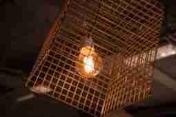 The Nest Lights